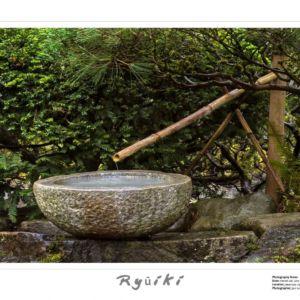 Ryuiki Basin photo by Jeri Knudson