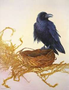 Painting with Raven standing on an empty nest white back ground